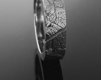 Witgouden ring met bladmotief.